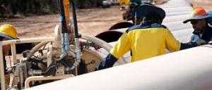 QCLNG Pipeline Celotti Workforce
